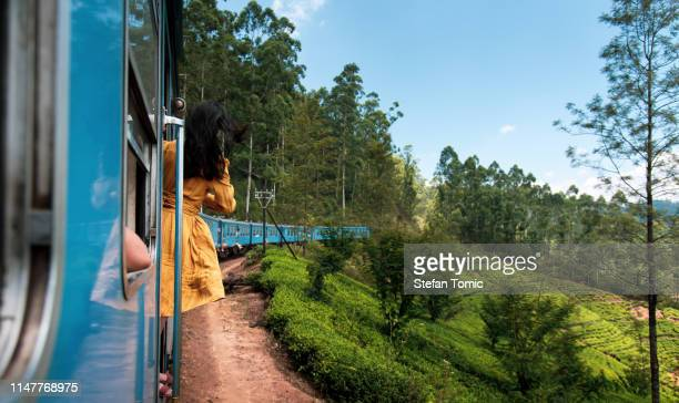woman taking the train ride in sri lanka tea plantations - kandy kandy district sri lanka stock pictures, royalty-free photos & images