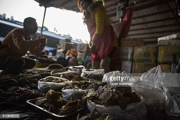 A woman talks with a customer at her stall selling pangolin scales and other exotic animal parts on February 17 2016 in Mong La Myanmar Mong La the...