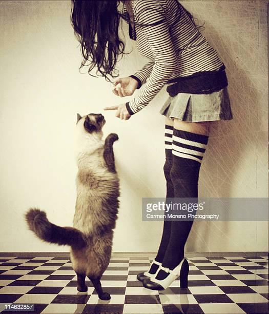 woman teching cat