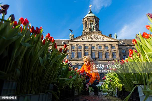 Woman tending tulips outside Paleis op de Dam