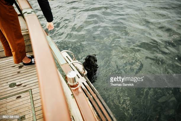 Woman throwing toy for dog swimming off of boat
