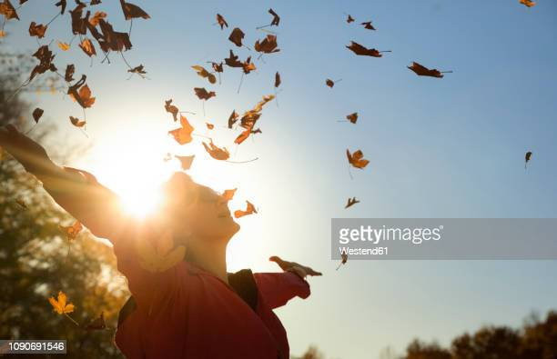 woman throwing up autumn leaves at backlight - herbst stock-fotos und bilder