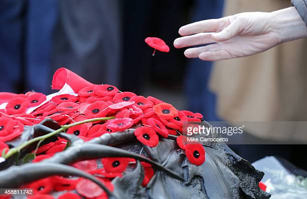 A woman tosses a poppy on the Tomb of the Unknown Soldier after this morning's Remembrance Day ceremony November 11 2014 in Ottawa Canada An...