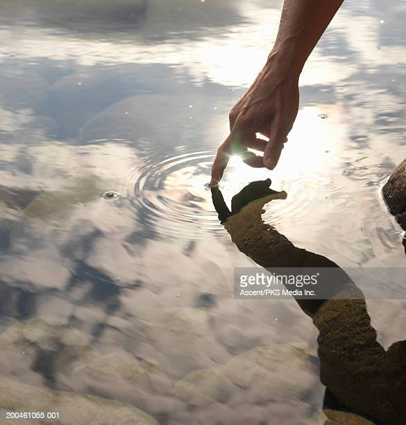 woman touching lake surface, close-up - toccare foto e immagini stock