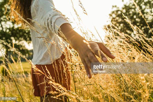 Woman touching tall grass in field