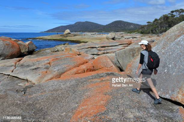 Woman tourist visit at the  Bay of Fires in Tasmania Australia