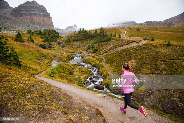 a woman trail running in the mountains. - banff stock photos and pictures