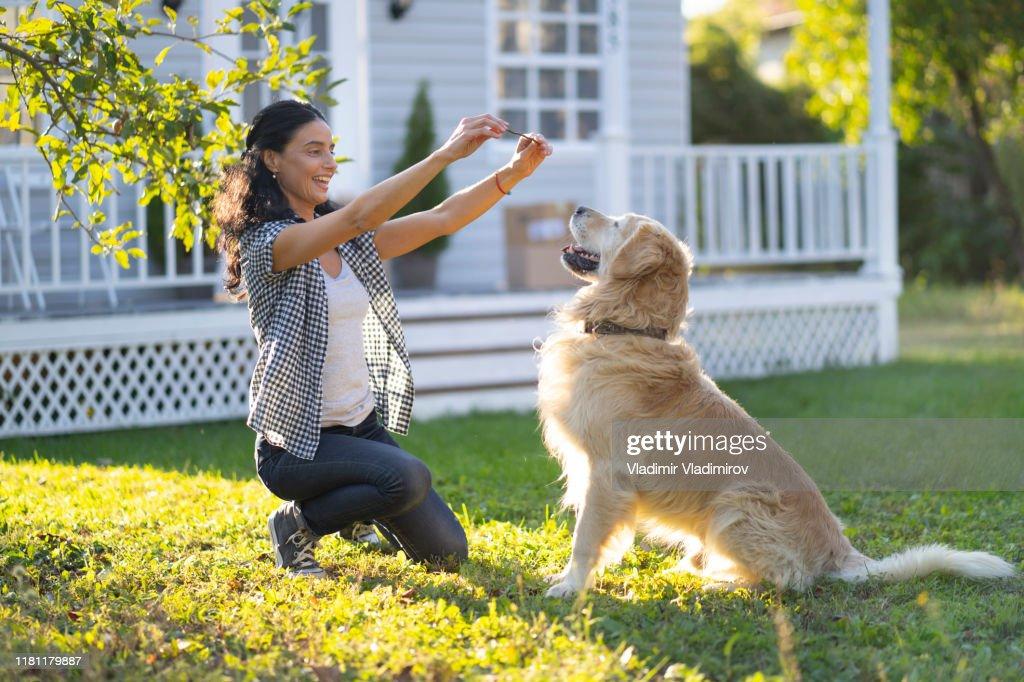 裏庭で犬を訓練する女性 : ストックフォト