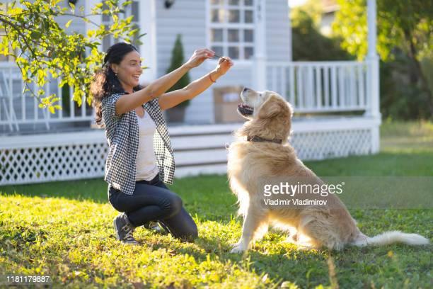 woman training a dog in back yard - training grounds imagens e fotografias de stock