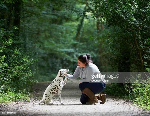 Woman training Dalmatian dog on forest path.
