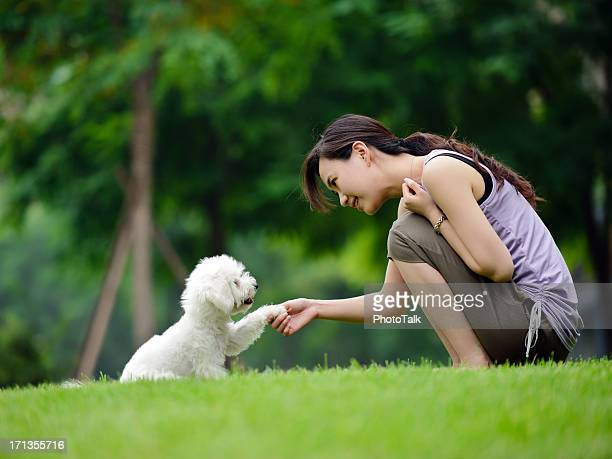 Woman Training Dog Shaking Hand and Communication- XXXXXLarge