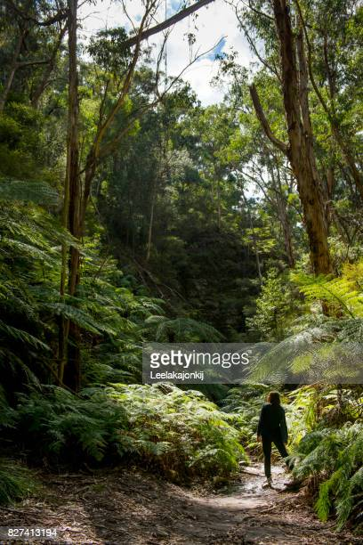 Woman traveler in nature of Blue Mountains national park