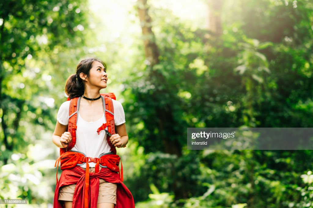 woman traveler with backpack walking in forest : Stock Photo