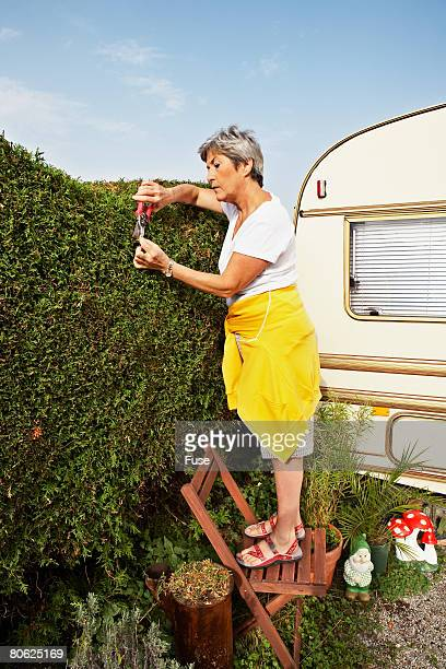 Woman Trimming Her Hedge