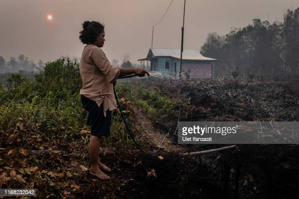 A woman try to extinguish the fire on burned peatland and fields near her house on September 14 2019 in Palangkaraya Central Kalimantan Indonesia...