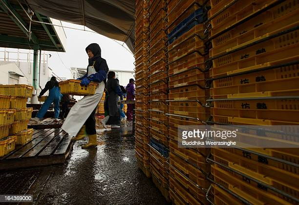 A woman unloads containers of sand lances from a vessel at Mega Fishing Port on March 23 2013 in Himeji Japan Sand lances are a popular local cuisine...