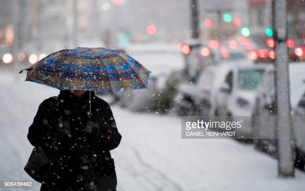 A woman uses an umbrella to protect herself against heavy snowfall on January 18 2018 in Hamburg northern Germany Weather forecasts predict a heavy...