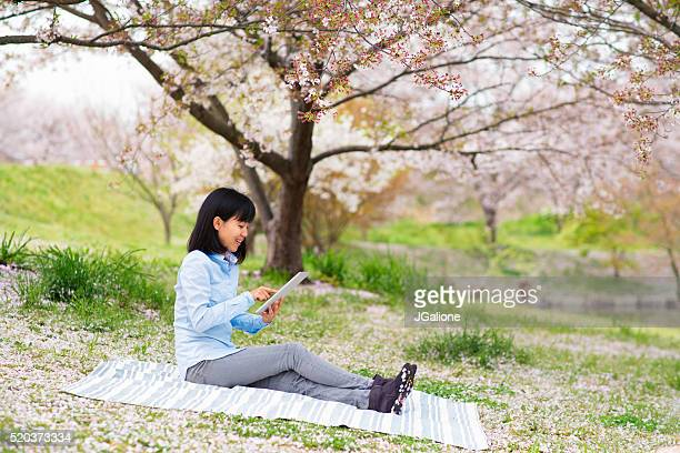 Woman using a digital tablet and enjoying the cherry blossoms