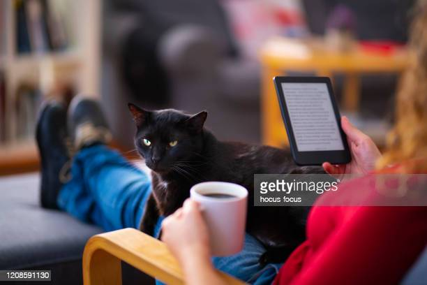 woman using an e-reader and reading an e-book with her cat at home - e reader stock pictures, royalty-free photos & images