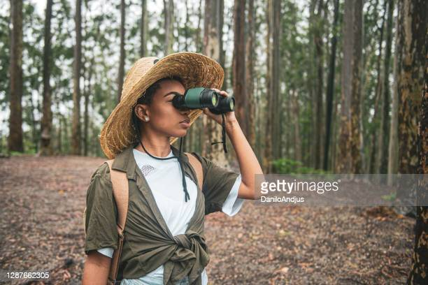woman using binoculars in the woods - binoculars stock pictures, royalty-free photos & images