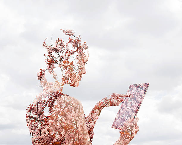 Woman Using Digital Tablet With Blossom. Wall Art