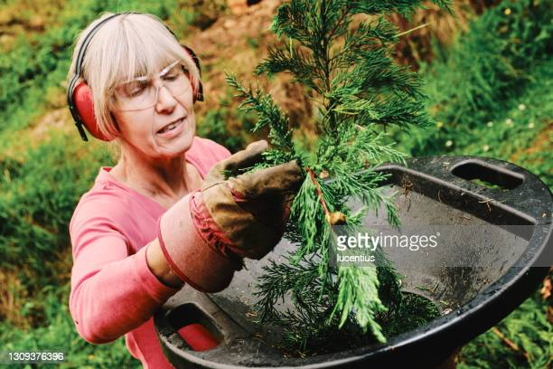 woman using electric shredder in garden - plant part stock pictures, royalty-free photos & images