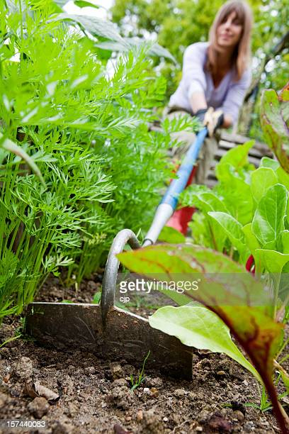 Woman Using Garden Hoe in Vegetable Patch