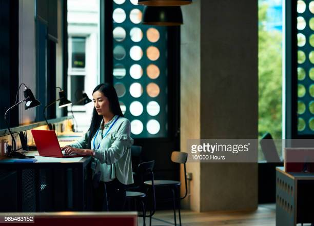 woman using laptop in office - coworking stock pictures, royalty-free photos & images