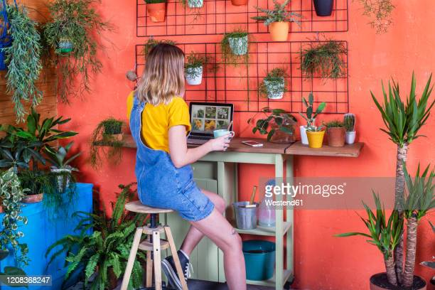 woman using laptop on her terrace - green thumb stock pictures, royalty-free photos & images