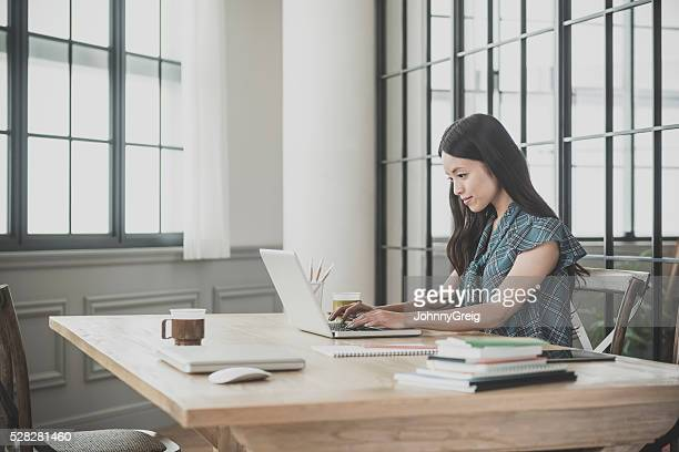 woman using laptop - east asian culture stock photos and pictures