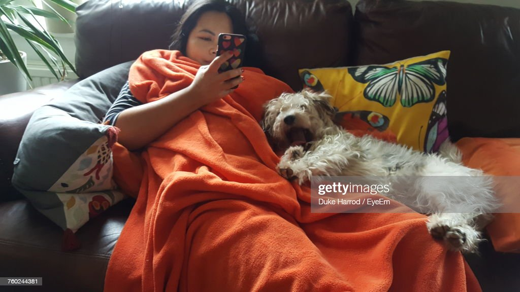 Woman Using Mobile Phone While Relaxing By Dog On Sofa At Home : Stock Photo