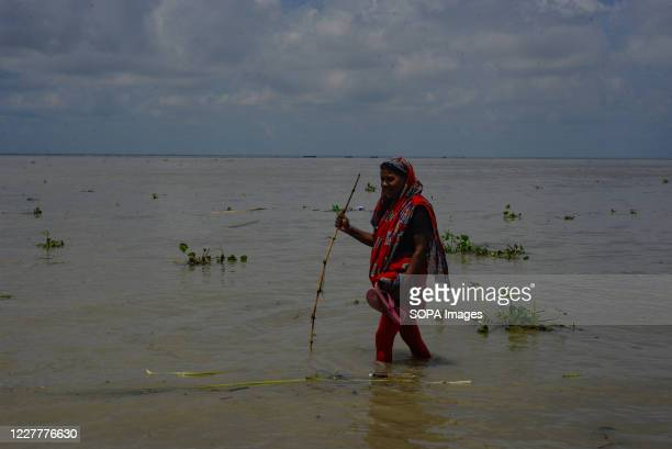 Woman wades through a submerged road. The flood situation is worsening in Munshiganj. Due to the heavy rain, the water level of the Padma River has...