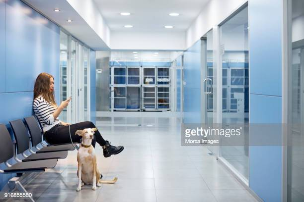 woman waiting for her dog to be examined by doctor - animal hospital stock pictures, royalty-free photos & images