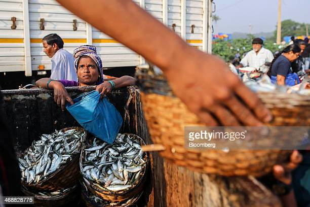 A woman waits left as workers load a truck with baskets of fish at the Margoa wholesale fish market in Margoa Goa India on Saturday Feb 8 2014...