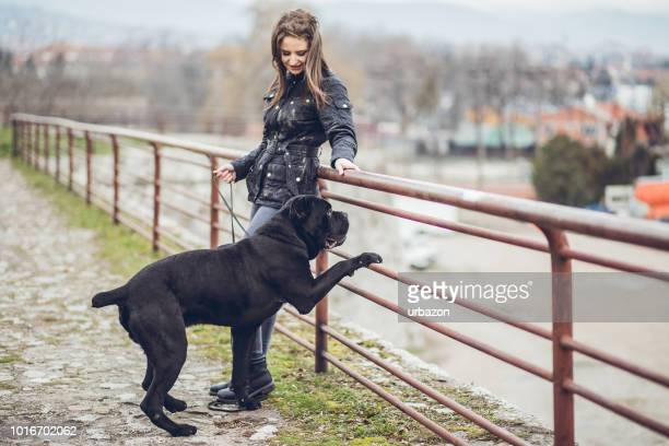 woman walking a dog in public park - black hairy women stock pictures, royalty-free photos & images
