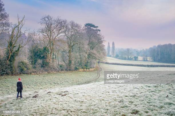 Woman walking a dog on a frosty morning.