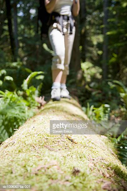 Woman walking across log in forest, low section (focus on foreground)