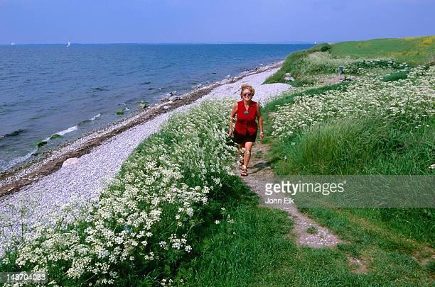 Woman walking along shore track at Skjoldnaes.