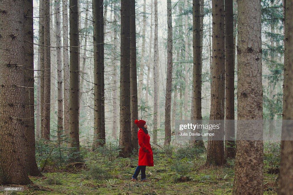 Woman Walking Along Wooded Road : Stock Photo