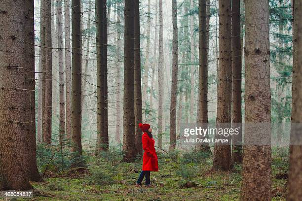 woman walking along wooded road - red coat stock pictures, royalty-free photos & images