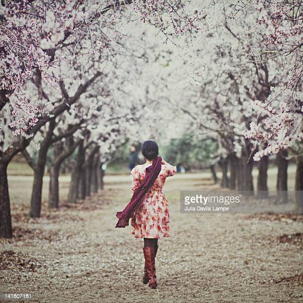 Woman walking among almond trees