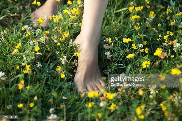 woman walking barefoot in field of wildflowers, cropped - scalzo foto e immagini stock