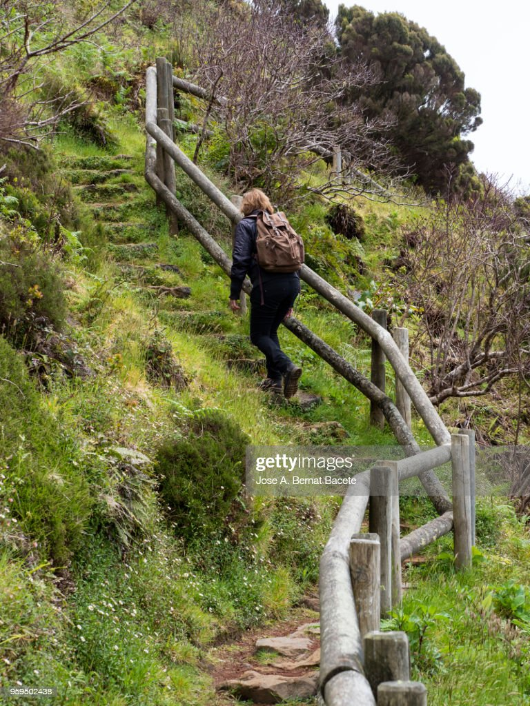 Woman walking by dirt track and green grass with a handrail of trunks of wood to walk along the field of the Terceira Island in the Azores, Portugal. : Stock-Foto