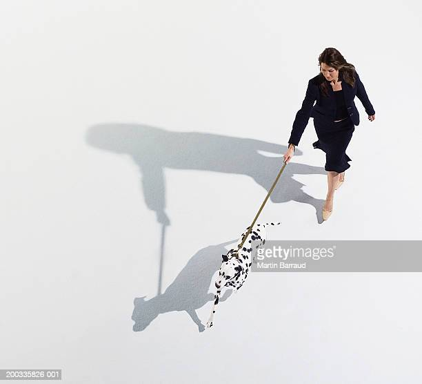 Woman walking dalmatian on lead, elevated view