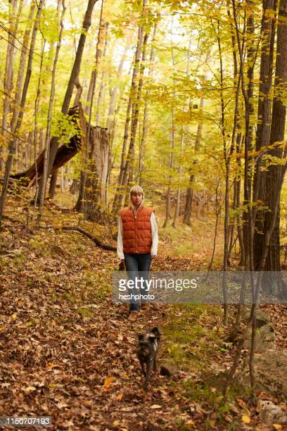 woman walking dog in woods - heshphoto stock pictures, royalty-free photos & images