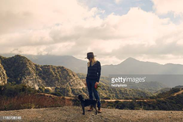 woman walking dog on hilltop, big bear lake, california, united states - heshphoto stock pictures, royalty-free photos & images