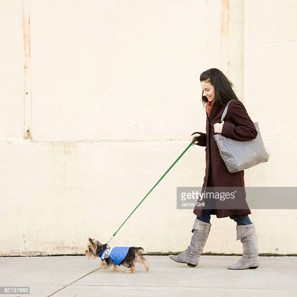 woman walking dog on sidewalk - americas next top dog stock pictures, royalty-free photos & images