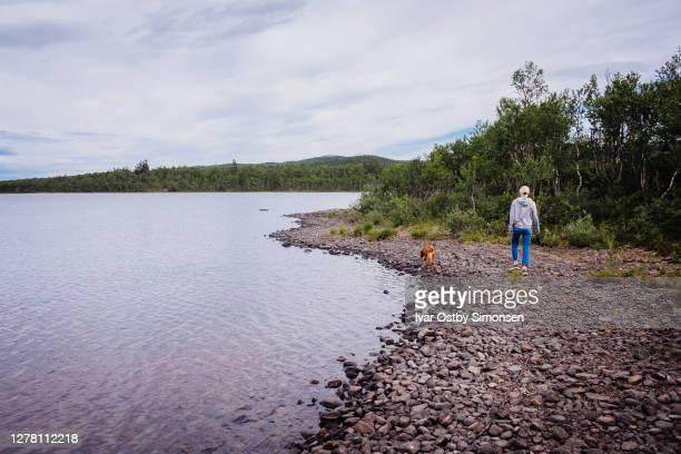 vrouw die haar hond alleen in aard door de meerkust loopt - meeroever stockfoto's en -beelden