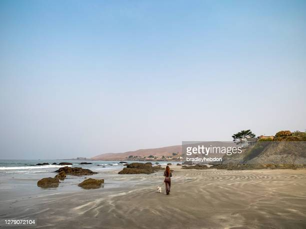 woman walking her dog along cayucos beach in california - cayucos stock pictures, royalty-free photos & images