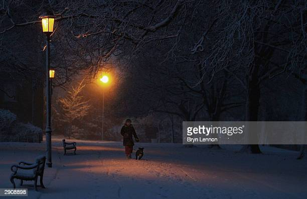 A woman walking her dog makes her way through Abington Park as snow storms hits Northampton on January 28 2004 in Abington Northampton England